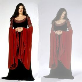 The Lord of The Rings Elf Princess Arwen Dress Halloween Cosplay Costume